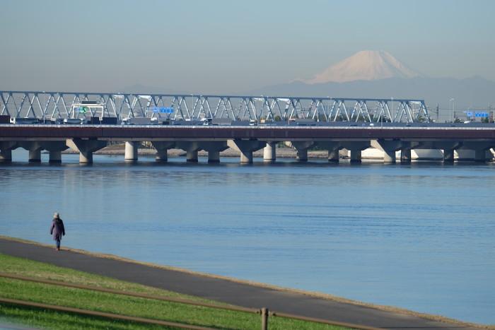 旧江戸川と富士山